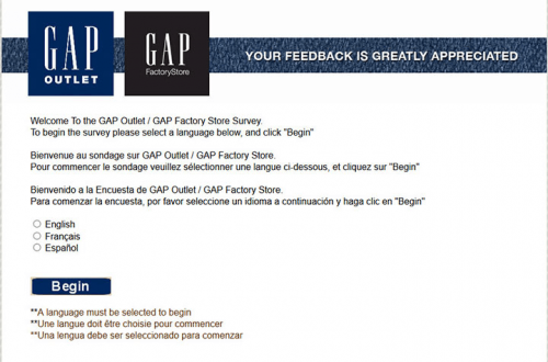 Gap Factory Survey