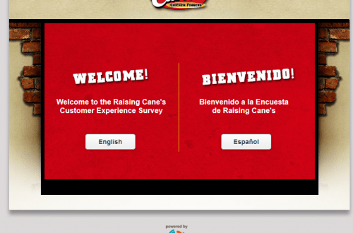 Raising Cane's Survey
